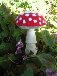 Little Red Agaric Mushroom by Little Sparrow Nest