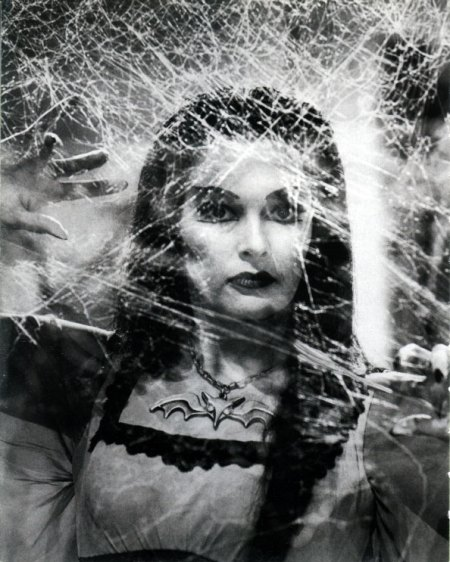 Lily Munster Spiderwebs